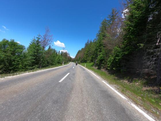 Bayerischer Wald Juni 2020