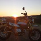 Honda Monkey im Sonnenuntergang
