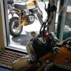 Honda Monkey zweimal in gelb
